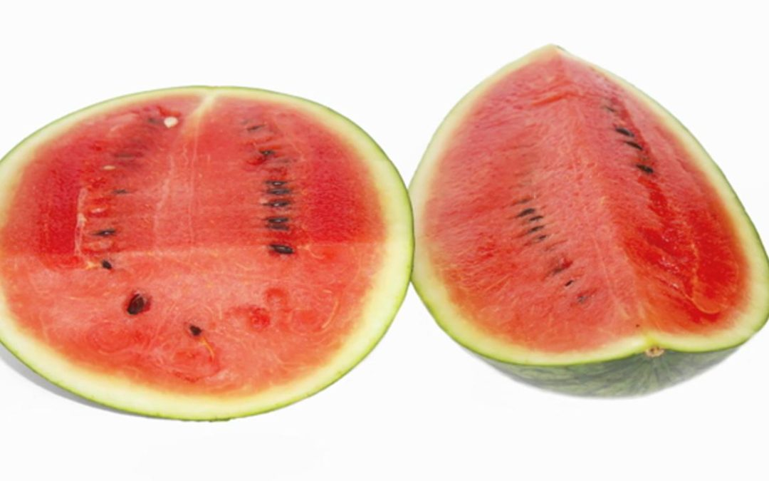 Down By The Bay….Where The Watermelons Grow
